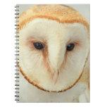 Barn Owl Spiral Note Books