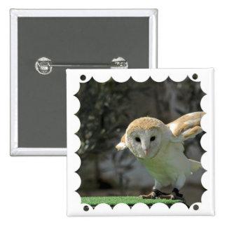 Barn Owl Square Pin