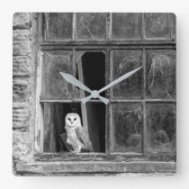 Barn owl square wall clock