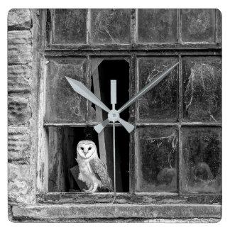 Barn owl square wall clock
