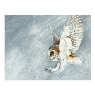 Barn Owl swooping with claws out Postcard