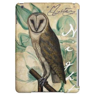 Barn Owl Teal Case For iPad Air