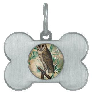 Barn Owl Teal Pet Name Tag