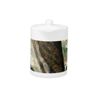 Barn Owl Teal Teapot