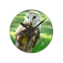 Barn Owl View Round Clock