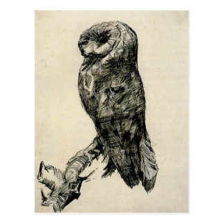 Barn Owl Viewed from the Side by Vincent van Gogh Postcard