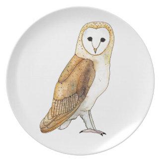 Barn Owl watercolour Plate