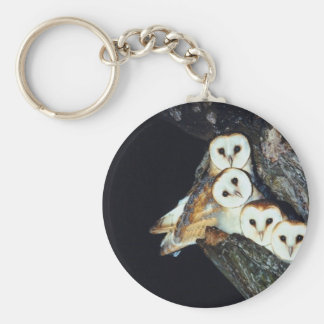 Barn Owls in a Tree Basic Round Button Keychain