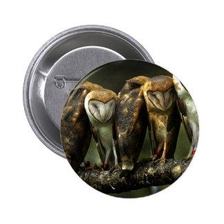 Barn Owls pin