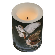 Barn Owls, the Birds of America John James Audubon Flameless Candle