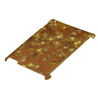 Barn Spiders Case For The iPad 2 3 4