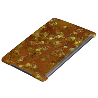 Barn Spiders iPad Air Case
