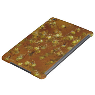 Barn Spiders iPad Air Cover