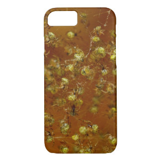 Barn Spiders iPhone 8/7 Case