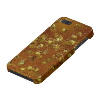 Barn Spiders iPhone 5 Cover