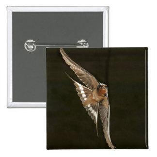 Barn Swallow in flight Button