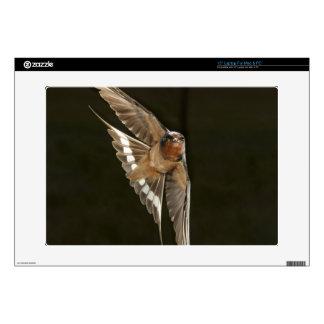 Barn Swallow in flight Laptop Decals