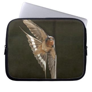 Barn Swallow in flight Laptop Sleeve