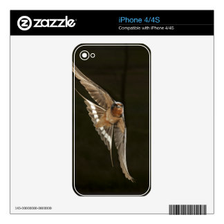Barn Swallow in flight Skin For iPhone 4