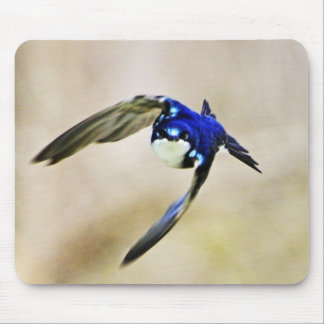 Barn Swallow Mouse Pad