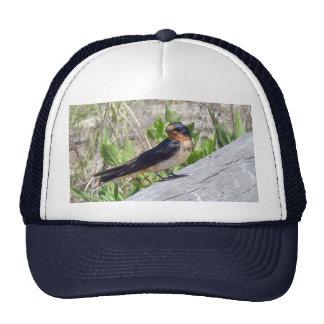 Barn Swallow Series Trucker Hat