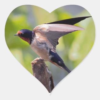 Barn Swallow Stickers