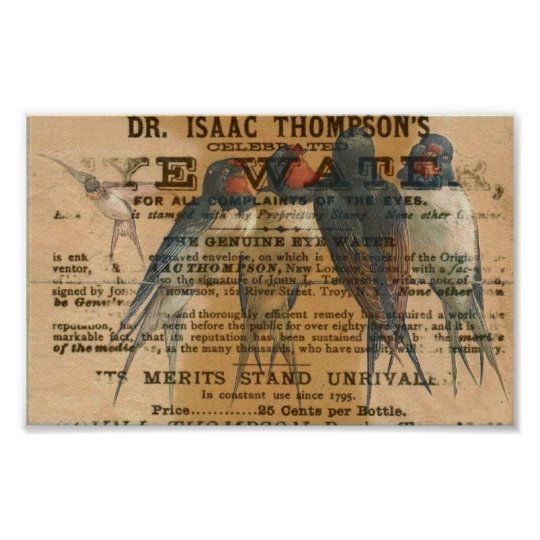 Barn Swallows Vintage Poster
