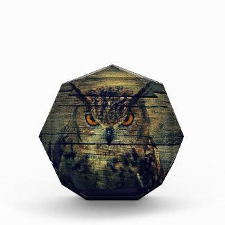 Barn Wood Gothic wild bird Spooky hoot owl Acrylic Award