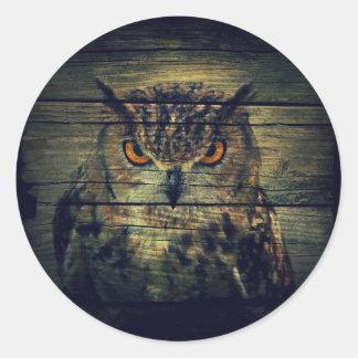 Barn Wood Gothic wild bird Spooky hoot owl Classic Round Sticker