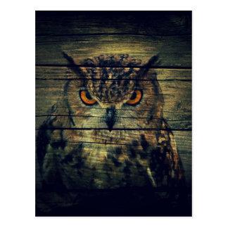 Barn Wood Gothic wild bird Spooky hoot owl Postcard