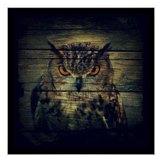 Barn Wood Gothic wild bird Spooky hoot owl Poster
