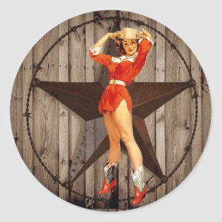 Barn wood Lone Star western country Cowgirl Classic Round Sticker