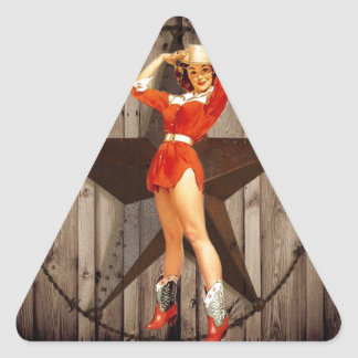 Barn wood Lone Star western country Cowgirl Triangle Sticker