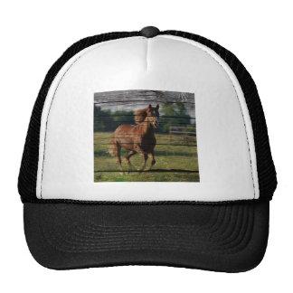 Barn Woodgrain Country Ranch Galloping Brown Horse Trucker Hat
