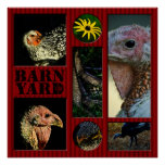 Barn Yard Montage Poster