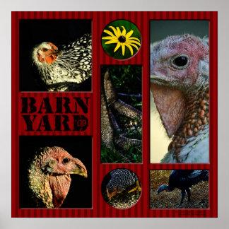 Barn Yard Montage Poster