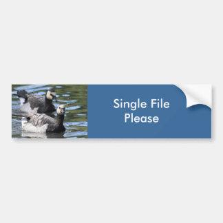 Barnacle Duet Bumper Sticker