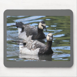 Barnacle Duet Mouse Pad