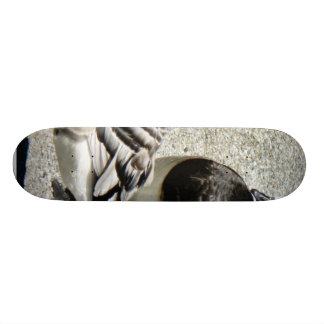 Barnacle Geese Skate Board Decks