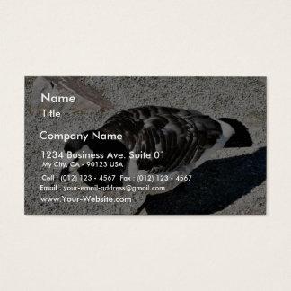 Barnacle Goose Animal Business Card