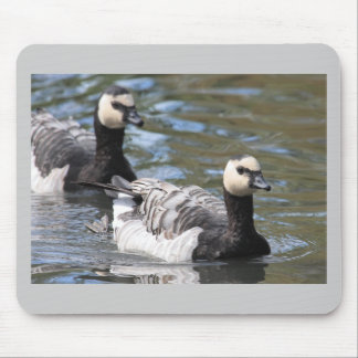 Barnacle Goose Mouse Pad
