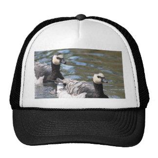 Barnacle Goose Trucker Hats