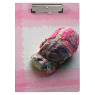 barnacle on canvas pink shell beach image clipboard