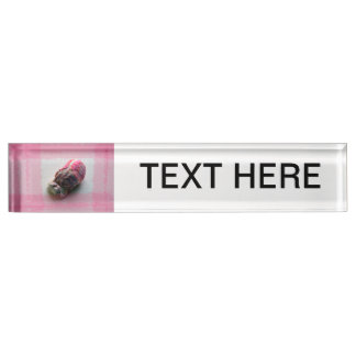barnacle on canvas pink shell beach image desk name plate
