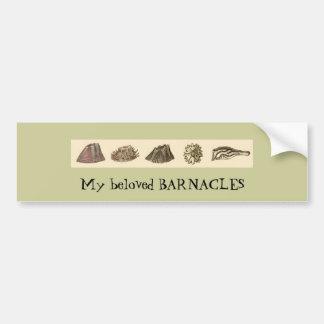 barnacle-slip, My beloved BARNACLES Bumper Sticker