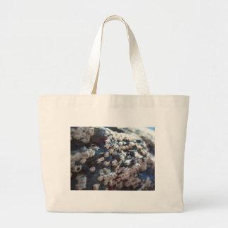 Barnacles 1 tote bag