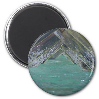 Barnacles 2 Inch Round Magnet