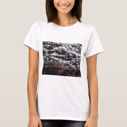 Barnacles 2 T-Shirt