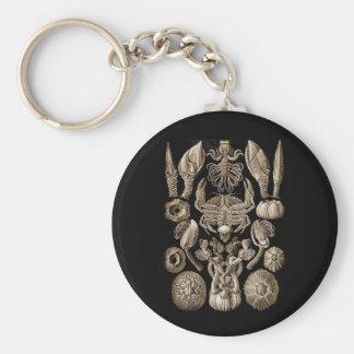 Barnacles Keychain