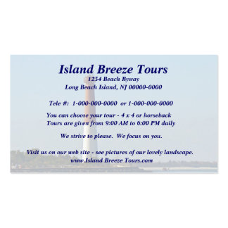 Barnegat Lighthouse Long Beach Island New Jersey Double-Sided Standard Business Cards (Pack Of 100)